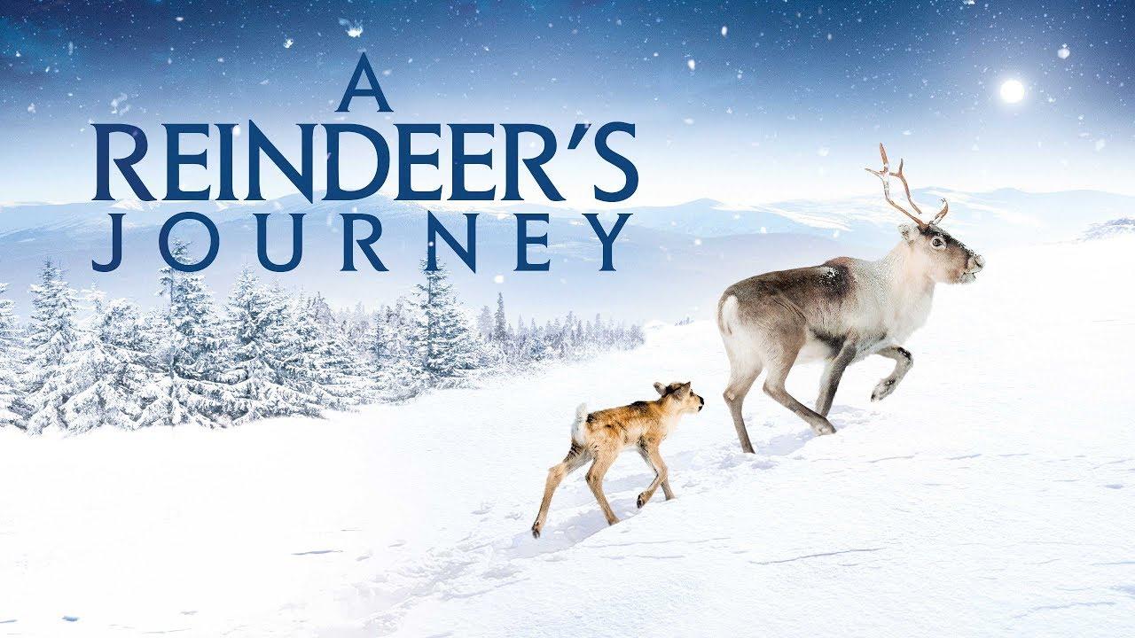 reindeersjourneytrailer