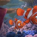 nemo-is-not-real-in-finding-nemo